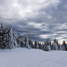 Курорт Пампорово, Зима, Зимен Пейзаж в Родопите, Смолянска област - Снимки от България, Курорти, Туристически Дестинации