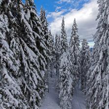 Курорт Пампорово, Зима, Пейзаж, Смолянска област - Снимки от България, Курорти, Туристически Дестинации