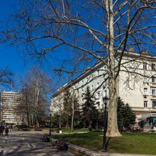 Димитровград, Главна Улица,   Област Хасково - Снимки от България, Курорти, Туристически Дестинации